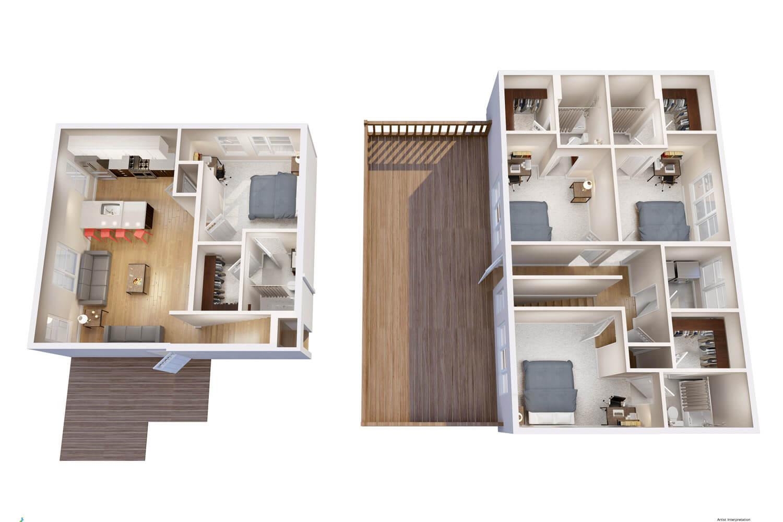 layout d1