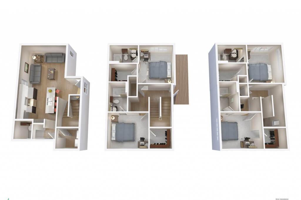layout d3