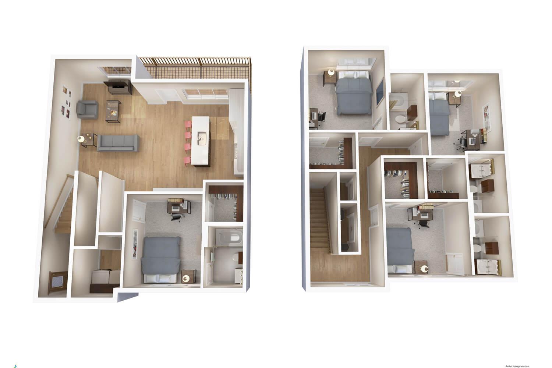 layout d6